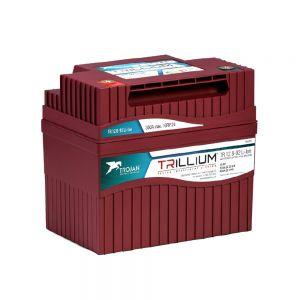 Trojan Lithium Ionen Batterie AKKU mit Batterie Überwachung System